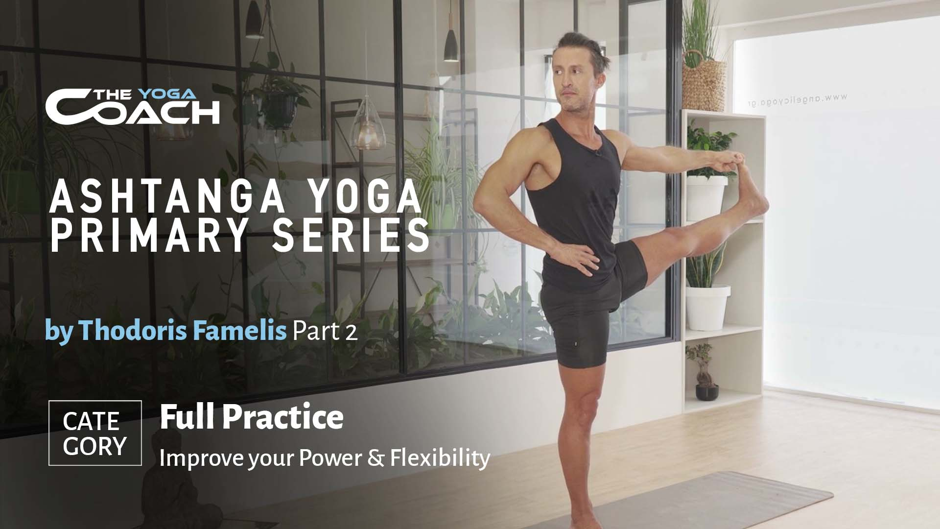Ashtanga Yoga Primary Series Part 2